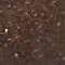 Brown Full-Grain