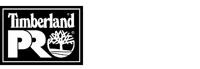 Generation T Boot Logo