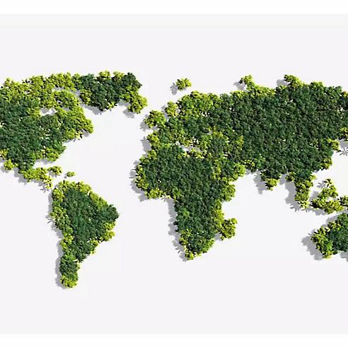 https://www.timberland.com.tr/blog-kolay-ileri-donusum-rehberi