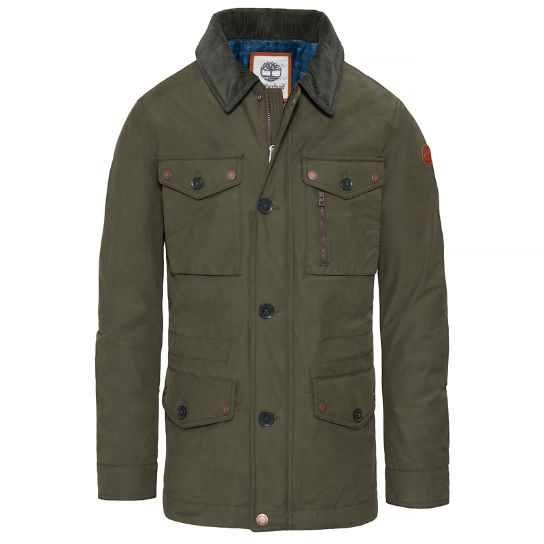 Fort Hill Field Jacket verde hombre | Timberland