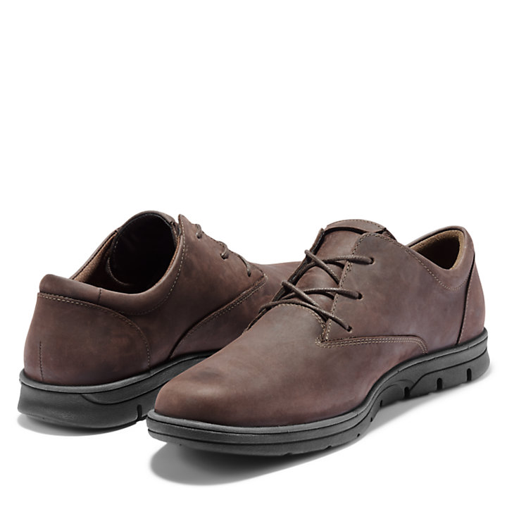 Bradstreet Plain Toe Oxford for Men in Brown-