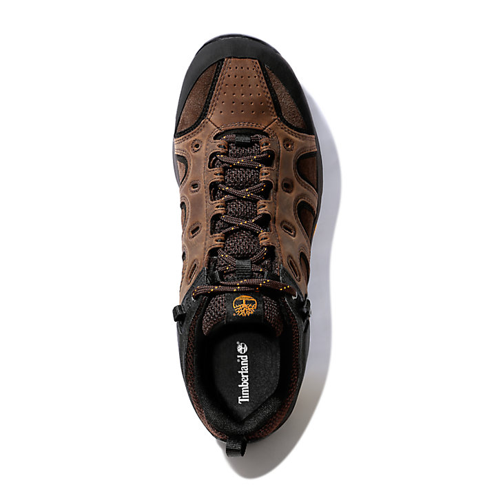 Scarpa da Uomo Ledge Gore-Tex® Approach in marrone-