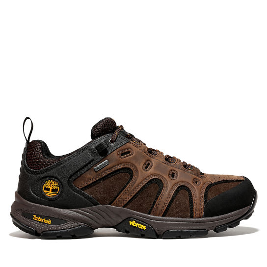Scarpa da Uomo Ledge Gore-Tex® Approach in marrone | Timberland