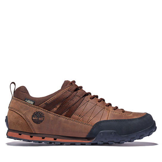 Men's Greeley GORE-TEX® Low Brown | Timberland