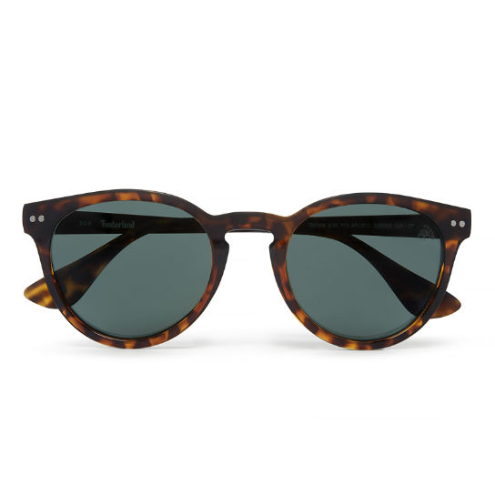 Advanced Polarised Sonnenbrille in Gelbbraun | Timberland