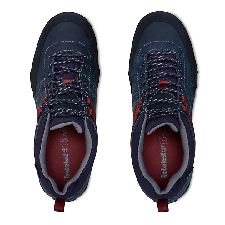 0fd29f75988bb Greeley Approach Gore-Tex® Leather Shoe Uomo
