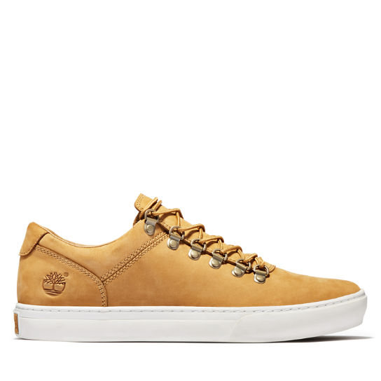 Adventure 2.0 Alpine Oxford for Men in Yellow Nubuck | Timberland