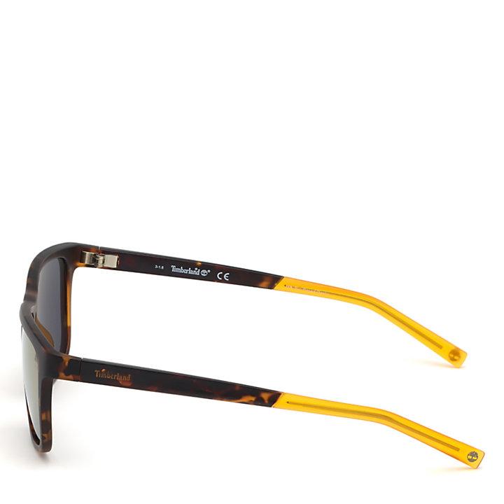 Men's Classic Sunglasses for Men in Brown-