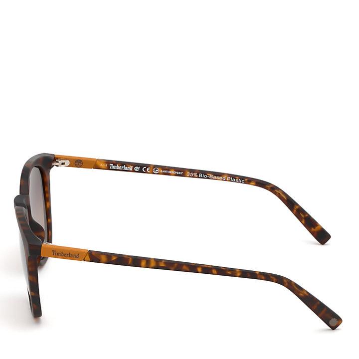 Gafas de sol para hombre en Marrón-