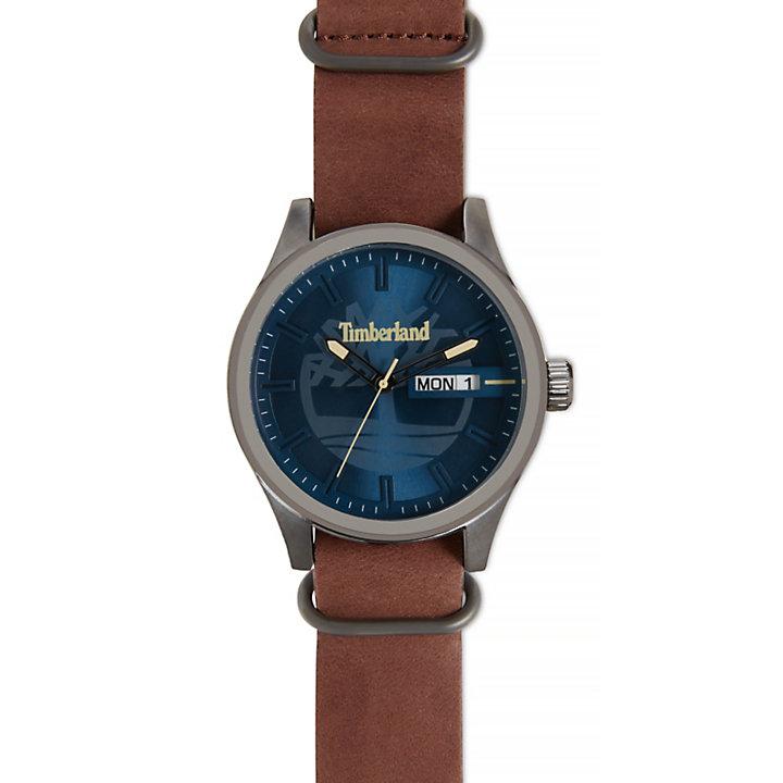 Orologio da Uomo Amesbury Blu/Marrone-