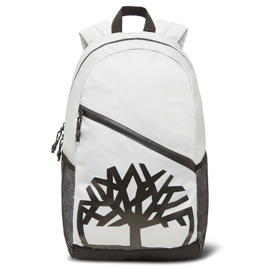 Castle Hill Backpack Hombre Gris claro | Timberland