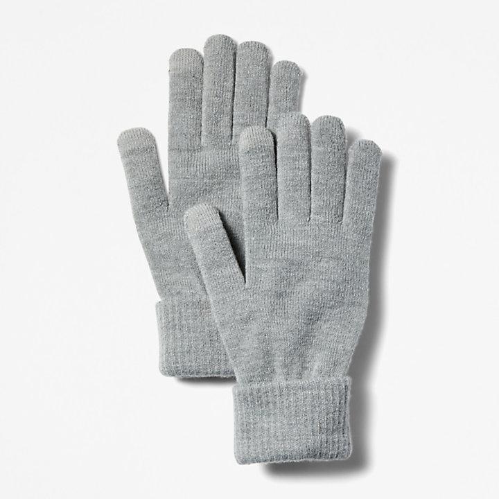 Touchscreen Handschoenen voor Heren in grijs-