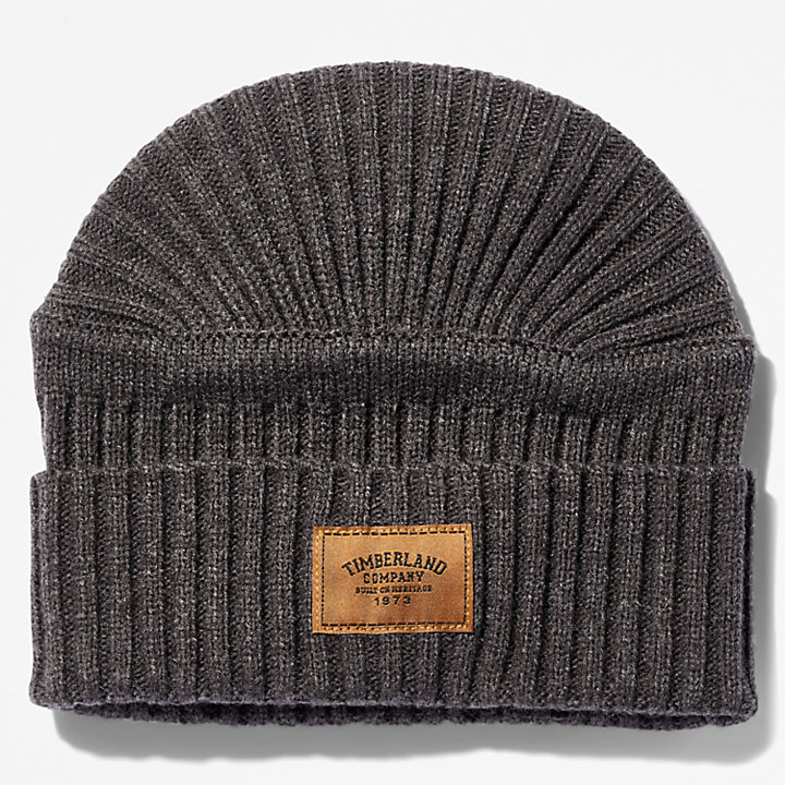 Gulf Beach Ribbed Beanie for Men in Grey-