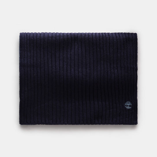 Colour Block Scarf for Men in Navy | Timberland