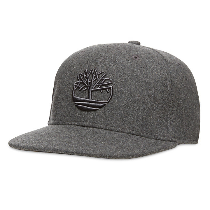 63918532d Baseball Hat for Men with Wool in Grey | Timberland