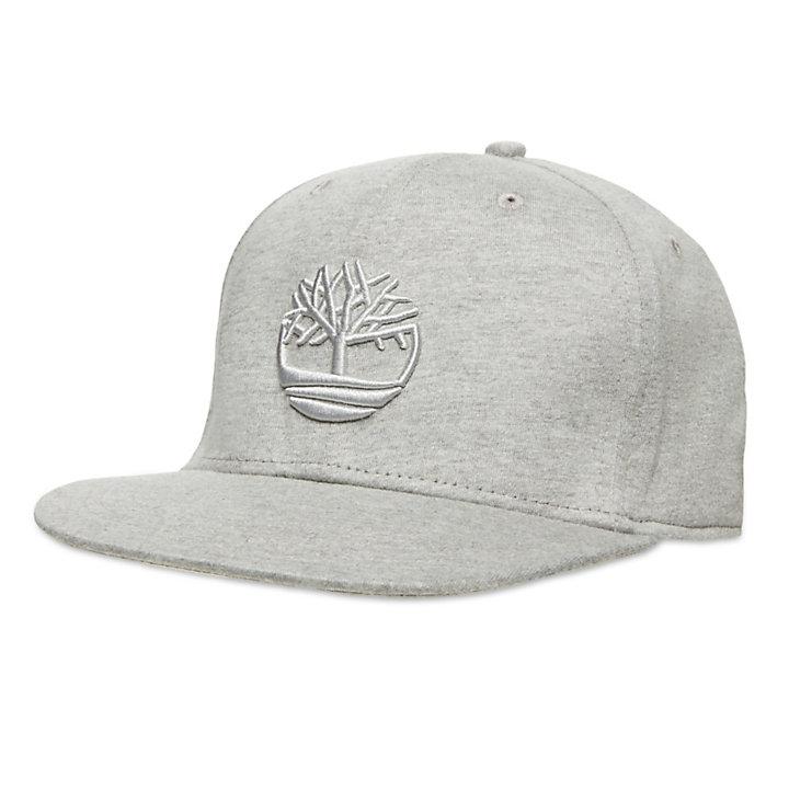 Fitted Baseball Cap for Men in Light Grey-