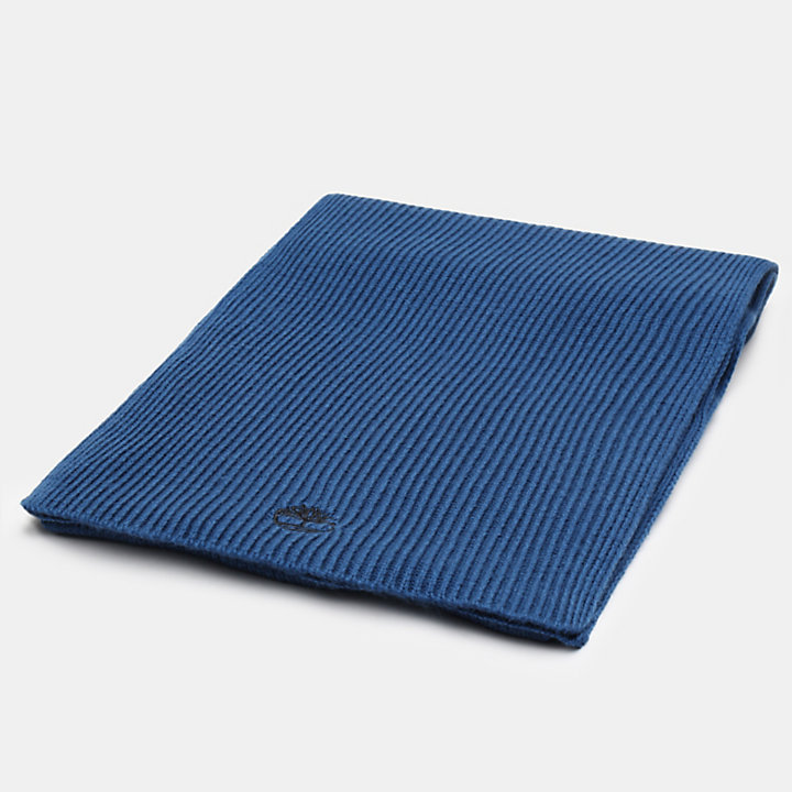 Ribbed Scarf for Men in Teal-