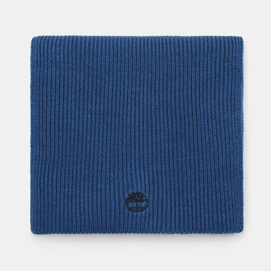 Ribbed Scarf for Men in Teal | Timberland