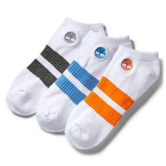Three Pair Striped No-Show Socks for Men in White | Timberland