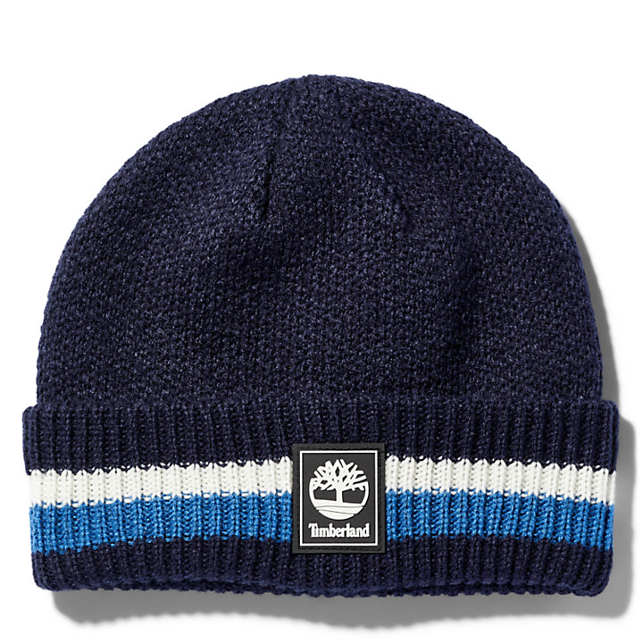 Striped Cuff Beanie for Men in Blue-
