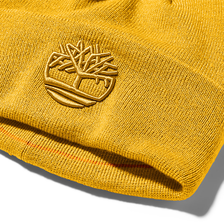Newington Embroidered Beanie for Men in Yellow-