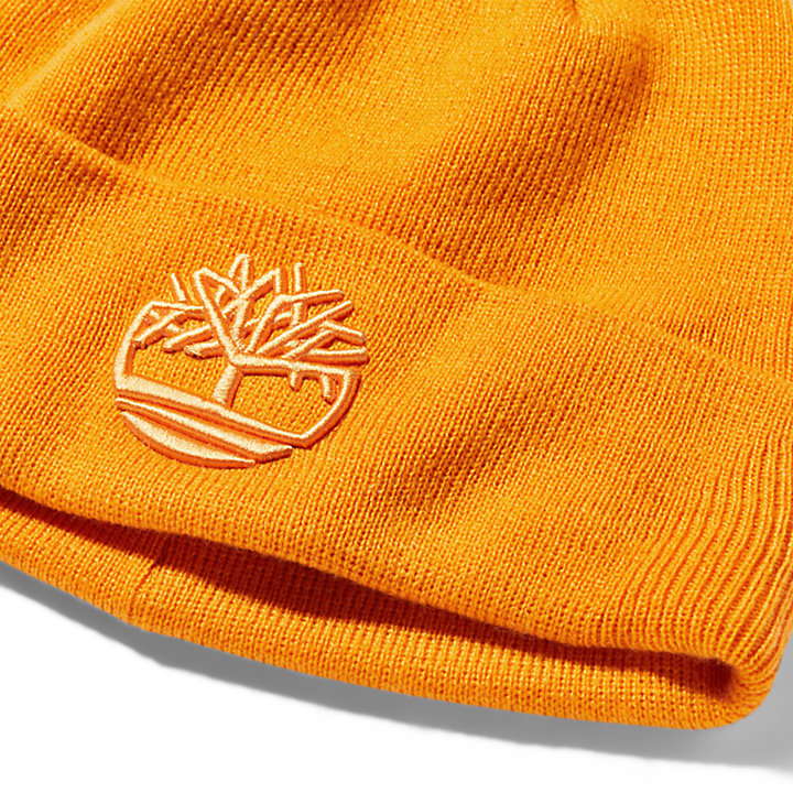 Newington Embroidered Beanie for Men in Orange-