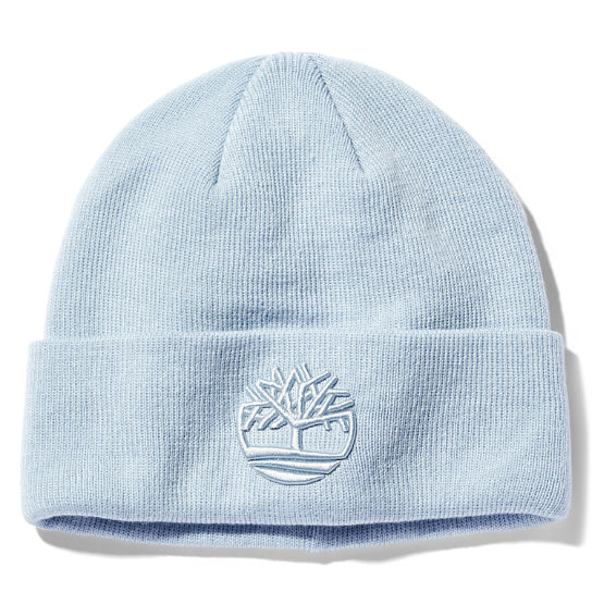 Newington Embroidered Beanie for Men in Light Blue | Timberland