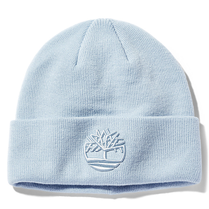 Newington Embroidered Beanie for Men in Light Blue-