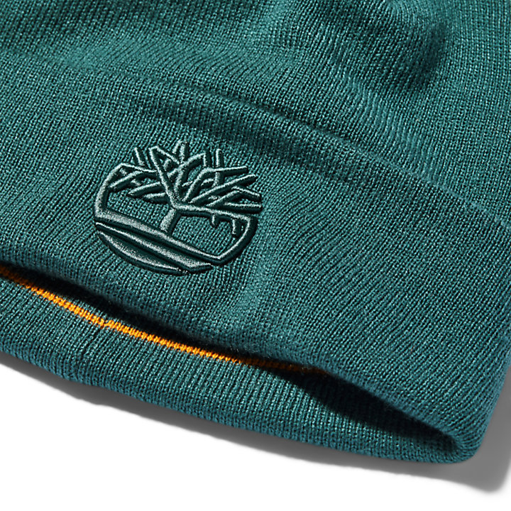 Newington Embroidered Beanie for Men in Green-