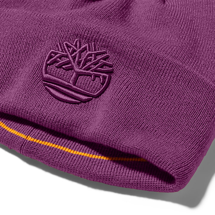 Newington Embroidered Beanie for Men in Purple-
