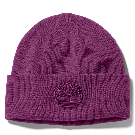 Newington Embroidered Beanie for Men in Purple | Timberland