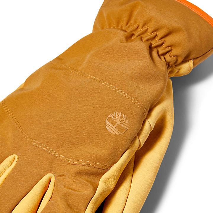 Touchscreen-Lederhandschuhe für Herren in Gelb-