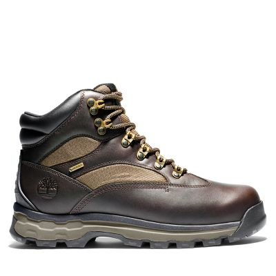 Chocorua+Trail+Gore-Tex%C2%AE+Hiker+for+Men+in+Brown