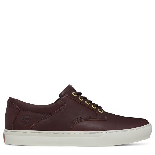 Adventure 2.0 Cupsole Oxford chocolate hombre | Timberland