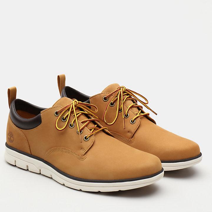 Bradstreet Leather Sneaker for Men in Yellow-