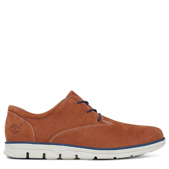 Men's Bradstreet Plain Toe Oxford Copper | Timberland