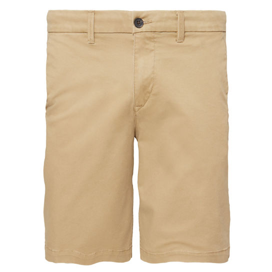 Squam Lake Chino Shorts Homme Kaki | Timberland