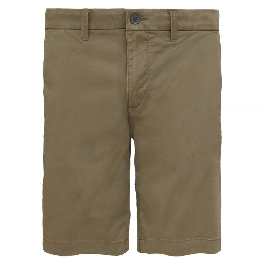 Squam Lake Chino Shorts Uomo Verde | Timberland