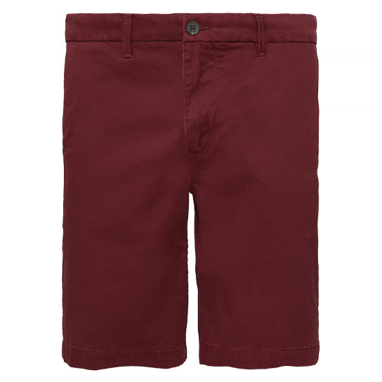 Men's Squam Lake Chino Shorts Deep Red | Timberland
