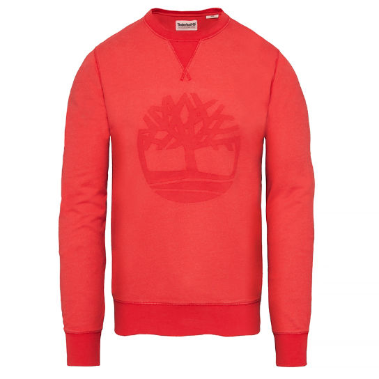 Men's Westfield River Tree Sweatshirt Red | Timberland