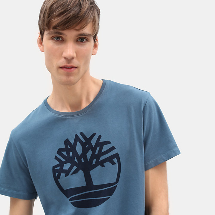 Kennebec River Tree T-shirt for Men in Teal-