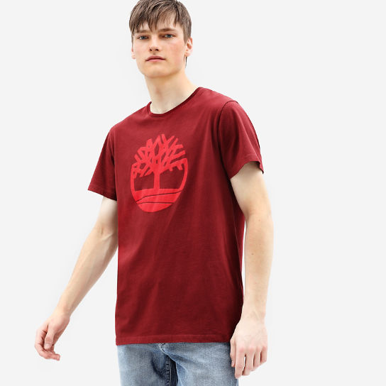 T-shirt Kennebec River Tree pour homme en rouge | Timberland