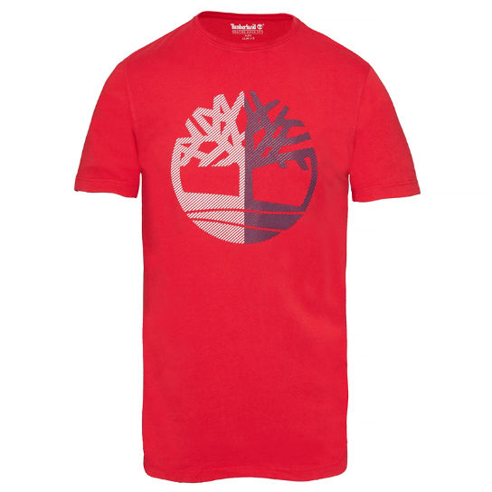 Men's Kennebec River Tree T-Shirt Red | Timberland