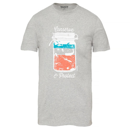 Kennebec River Graphic T-shirt Grijs Heren | Timberland