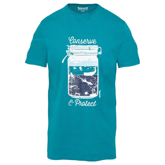 Men's Kennebec River Graphic T-Shirt Teal | Timberland
