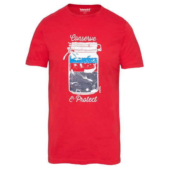 Men's Kennebec River Graphic T-Shirt Red | Timberland