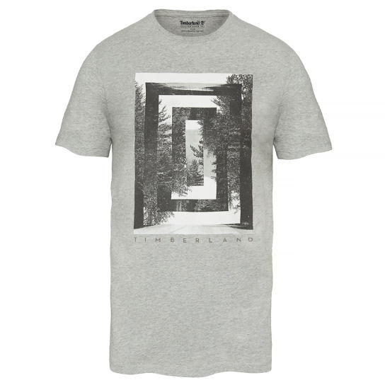 Men's SS Kennebec River T-Shirt Grey | Timberland