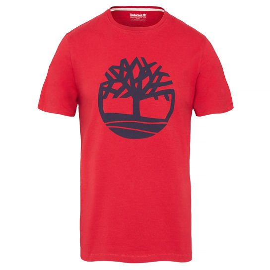 Kennebec River T-shirt Homme Rouge | Timberland