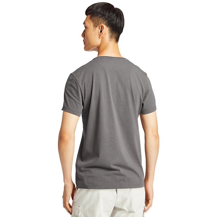 Dunstan River T-Shirt for Men in Light Grey-
