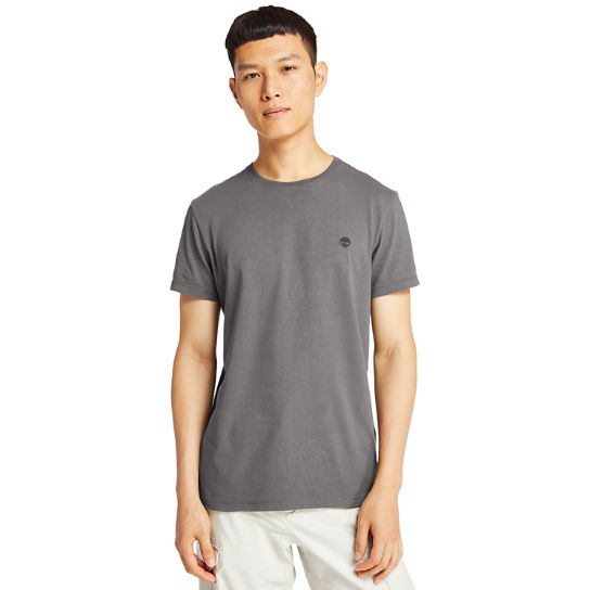 Dunstan River T-Shirt for Men in Light Grey | Timberland